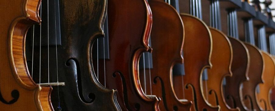 fiddle entertainment
