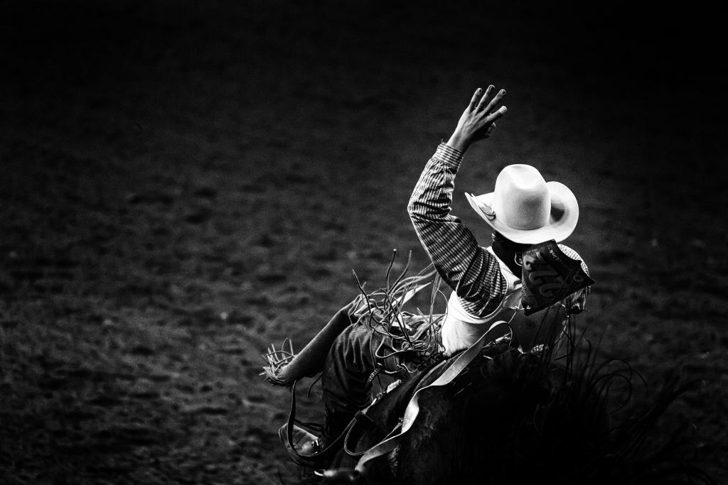 calgary stampede 2019